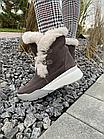 Ботинки женски зимние замшевые бежевые U Spirit, фото 3