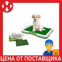 Лоток для собак с травой Puppy Potty Trainer Pad зелёный туалет для собак с доставкой по Киеву и Украине, фото 1