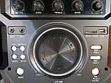 Комплект акустических систем для дискотеки Ailiang UF-1021A-DT комбо + пульт ДУ, Bluetooth, Диджей Микшер, фото 6