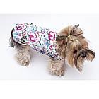 Жилет для собак марта, девочка, велсофт, XXS/ 22 см, фото 3