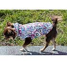 Жилет для собак марта, девочка, велсофт, XXS/ 22 см, фото 4