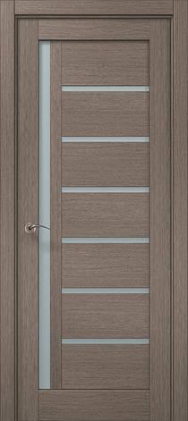 Двері Папа Карло, Полотно, Millenium, модель ML-16, фото 2