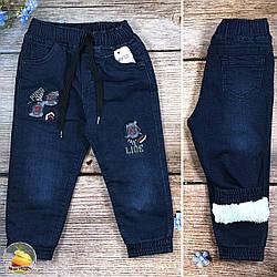 Дитячі джинси на травичці для хлопчика Розміри: 1,2,3,4 року (20839)