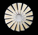 Світлодіодні люстри Splendid-Ray 30-3900-47, фото 2