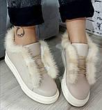 Ботинки молодежные на толстой подошве из натуральной кожи от производителя модель БС20035-3, фото 2