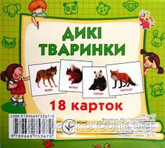 """Карточки мини (18 карточек) """"Дикие животные"""" от Jumbi. J011y"""