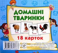 """Карточки мини (18 карточек) """"Домашние животные"""" от Jumbi. J012y"""
