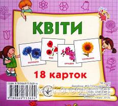 """Карточки мини (18 карточек) """"Цветы"""" от Jumbi. J013y"""