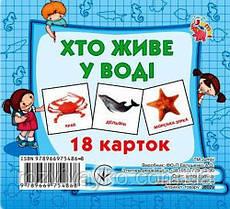 """Карточки мини (18 карточек) """"Кто в воде живет"""" от Jumbi. J802у"""