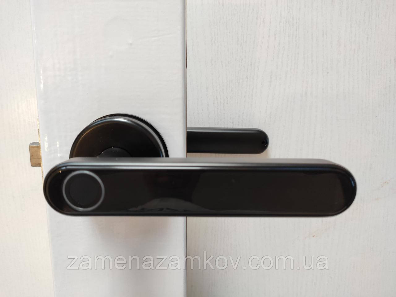 Акция! кодовый замок с отпечатком пальца, кодовый замок-ручка TTLock биометрический