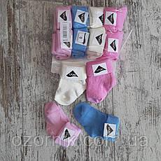 Оптом Носочки Цветные для Новорожденных Детей Нолёвка Турция