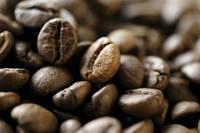Эксклюзивные моносорта Кофе