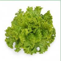 Семена салата КС 129, 5 гр