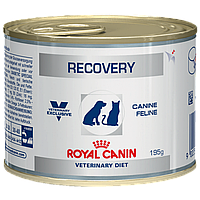 Royal Canin Recovery диета для собак и кошек в период анорексии, выздоровления 195 г