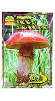 Мицелий грибов  - Масленок обыкновенный  10г