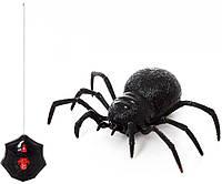 Радиоуправляемый Паук Черная Вдова, фото 1