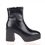 Женские стильные ботинки  Fabio Monelli SCR313-04 BLACK P KOGA осень 2020, фото 3