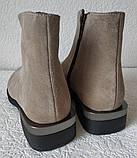 Ferre стильные женские демисезонные ботинки  натуральная замша змейка впереди красивый цвнт капучино, фото 7