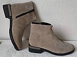 Ferre стильные женские демисезонные ботинки  натуральная замша змейка впереди красивый цвнт капучино, фото 9