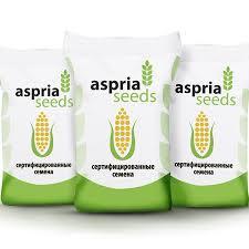 Семена кукурузы as 35001 new