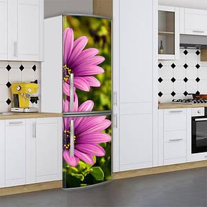 Виниловая наклейка на холодильник, ромашки, 180х60 см - Лицевая(В), с ламинацией