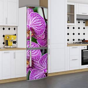 Виниловая наклейка на холодильник, орхидеи, 180х60 см - Лицевая(В), с ламинацией