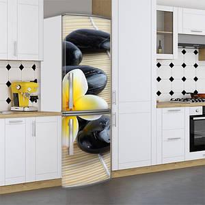 Наклейка на холодильник, цветок на камнях, 180х60 см - Лицевая(В), с ламинацией