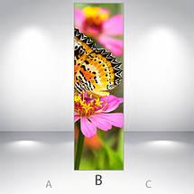 Прикольные Виниловая наклейка на холодильник, Самоклейка, 180 х 60 см, Лицевая (holSS1_fa11570 Животные), фото 3