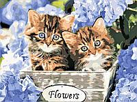 Картина по номерах ArtStory Кошенята в квітах 30х40см AS0597 розпис за номерами набір для розпису, фарби та пензлі