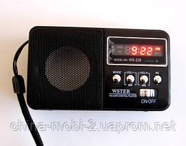 Портативная колонка-радио WS-239 MP3/SD/USB/AUX/FM, фото 3