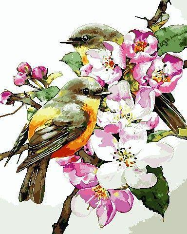 Картина по номерах ArtStory Пташки на гілці 40х50см AS0722 розпис за номерами набір для розпису, фарби та пензлі