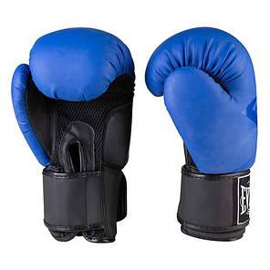 Боксерские перчатки матовые синие 10oz Everlast DX-3597, фото 2
