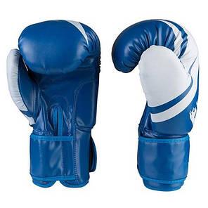 Боксерские перчатки синие 8oz Fire&Ice DX, фото 2