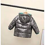 Демисезонная курточка для мальчика  Размер: 110 см, фото 3