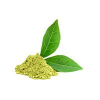 Жиросжигатель GREEN TEA EXTRACT POWDER (ЭКСТРАКТ ЗЕЛЕНОГО ЧАЯ В ПОРОШКЕ)