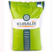 Семена подсолнечника ЕС Генезис Евралис (под Евролайтинг Плюс)
