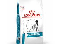 Сухой корм Royal Canin Anallergenic Canine для собак при пищевой аллергии или непереносимости 3 кг