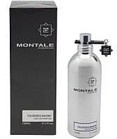 Парфумована вода унісекс Montale Fougeres Marine 100ml(test), фото 1