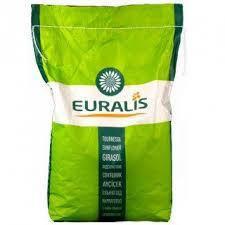 Насіння соняшнику ЄС Флоримис F1 (Euralis ) (Евролайтинг)