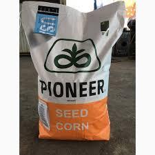 Семена кукурузы Пионер PR38A22 ФАО 390