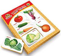 Рамка-вкладыш с подслоем Овощи Украины 19х26.5 см. Методика Монтессори