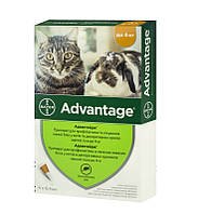 Адвантейдж 40 1 пипетка до 4 кг Баер - капли от блох для котов и декоративных кролей