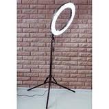 Кільцева лампа 30см з штативом, фото 2