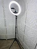 Кільцева лампа 30см з штативом, фото 3