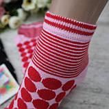 """Носочки женские, укороченные, """"Sinan"""", размер 36-40. Женские носки, носки для женщин, фото 7"""