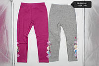 Лосины для девочек оптом, Disney,4-10 лет, № Fr-g-leg-41