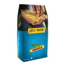 Семена кукурузы ДКC 4608 ФАО 380 (Мonsanto)