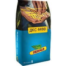 Семена кукурузы ДКС 4490 (Мonsanto)