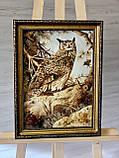 "Картина из янтаря "" Сова"" 30x40 см, фото 4"