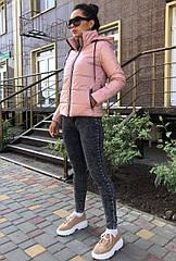 Куртка демисезонная NOBILITAS 42 - 48 пудра плащевка (арт. 20041)